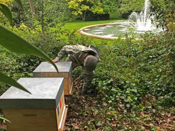 Paris le 11 mai 2021 : Xavier Frémin, apiculteur et agriculteur de l'Eure en train de positionner ses deux ruches bleu bla c rouge  dans les jardins de l'Elysée.