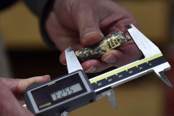 Morceau de 5,5 cm d'un péroné de 450 000 ans identifié au centre européen d'étude pré-historique de Tautavel (66)