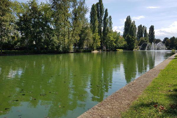 Le Nouveau Bassin à Mulhouse