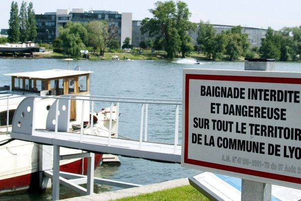 La baignade dans le Rhône, interdite dans la plupart des communes françaises, devient autorisée une fois la frontière suisse dépassée.