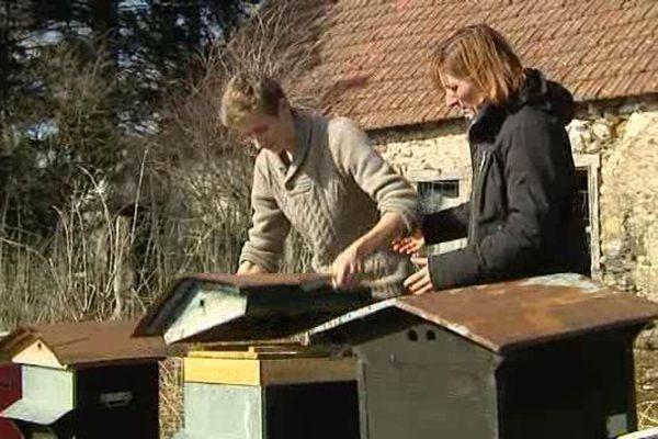 D'ici 2017, Nicolas espère obtenir 70 ruches supplémentaires