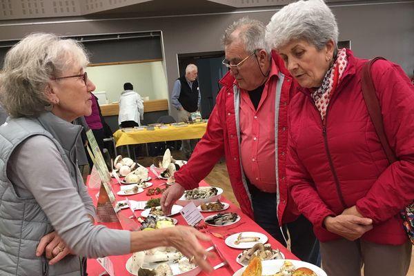Des expositions mycologiques existent, comme ici à Notre-Dame-de-Sanilhac en Dordogne, pour vous aider à distinguer les champignons toxiques.