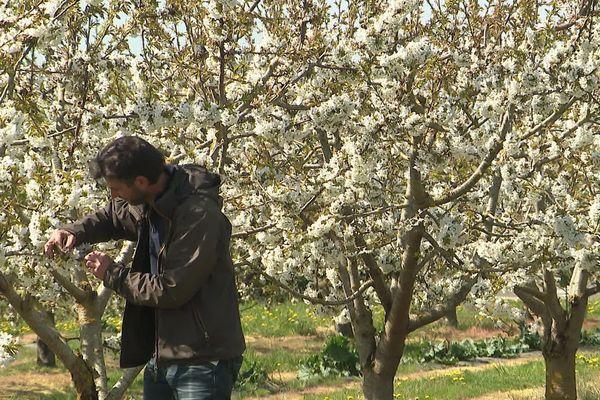 À Bugnicorut, Ghislain Mascaux, producteur, propose des variétés de fruits et légumes en libre service
