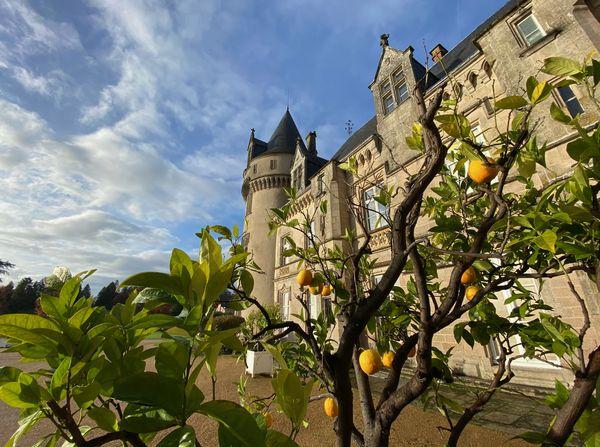 Chateau de Bort