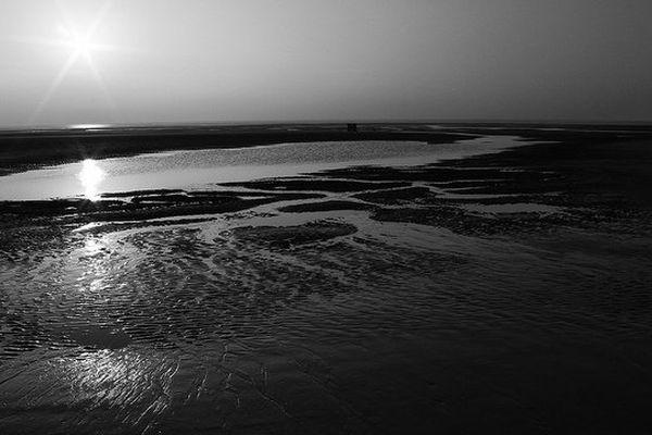 La plage de Berck.