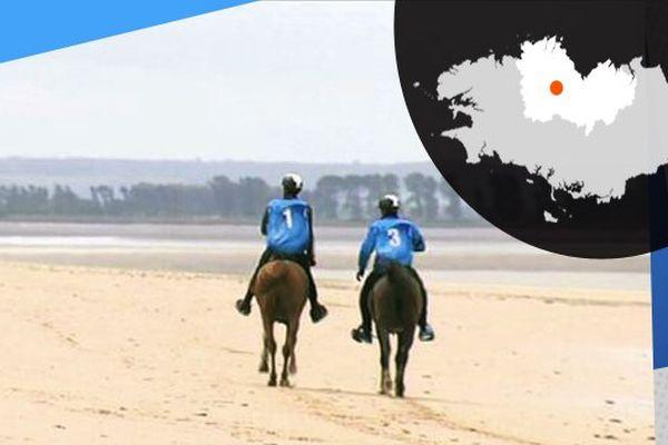 Sur le sable, pendant une épreuve d'endurance équestre.