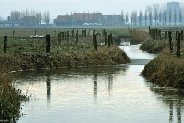 Des watergangs aux Moëres, près de Dunkerque.
