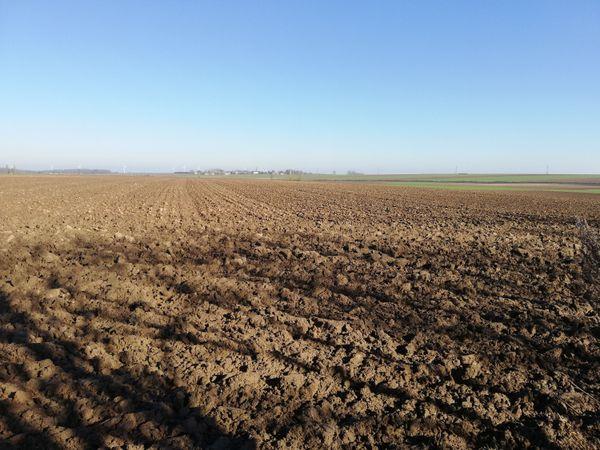L'emplacement de l'ancienne ligne de front de 1917 à Bullecourt (Pas-de-Calais).