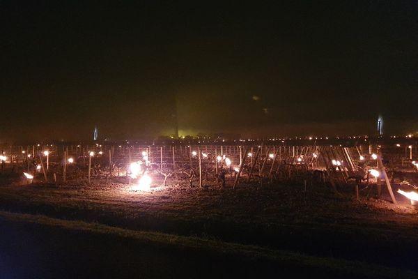 Deux nuits à combattre le gel avec des bougies © Guillaume Gresta