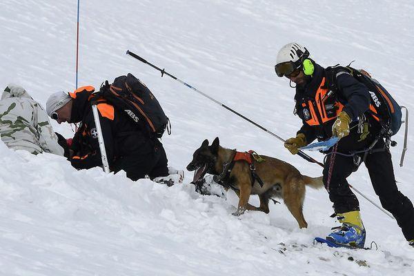Photo d'illustration - Les gendarmes du PGHM (peloton de gendarmerie de Haute Montagne) avec un chien et des soldats français du GAM (Groupement d'Aguerrissement en Montagne) recherchent des victimes lors d'un exercice d'avalanche, le 13 février 2017, au col du Galibier Valloire, Alpes françaises.