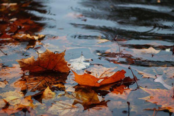 Même faible, la pluie fera à nouveau parler d'elle, ce mardi.