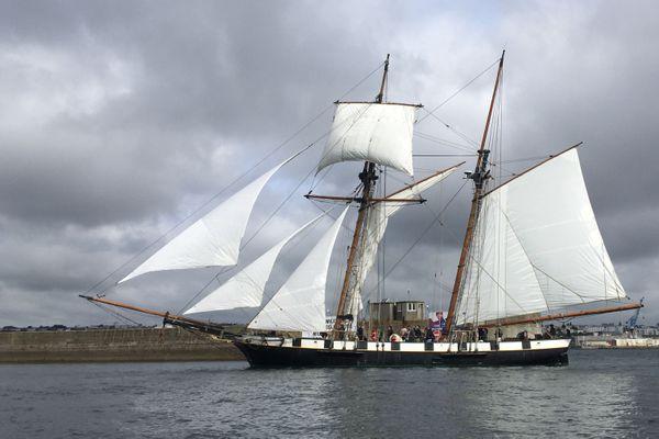 Certains bateaux, comme la Recouvrance, à Brest, naviguent à nouveau cet été, mais d'autres, notamment gérés par des associations, n'ont pas armé leurs bateaux, faute de visibilité économique.
