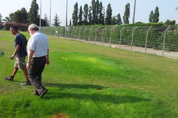 L'inspection de la pelouse a commencé aussitôt.