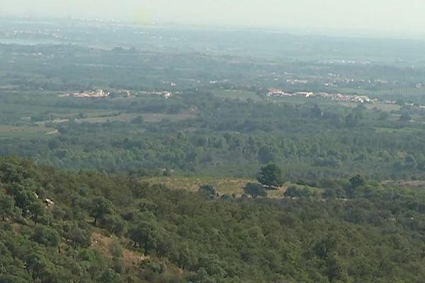 Le site de Passa (Pyrénées-Orientales) où pourrait être implanté un parc de 6 éoliennes