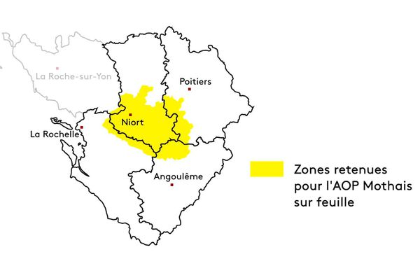 La zone de production du Mothais-sur-feuille