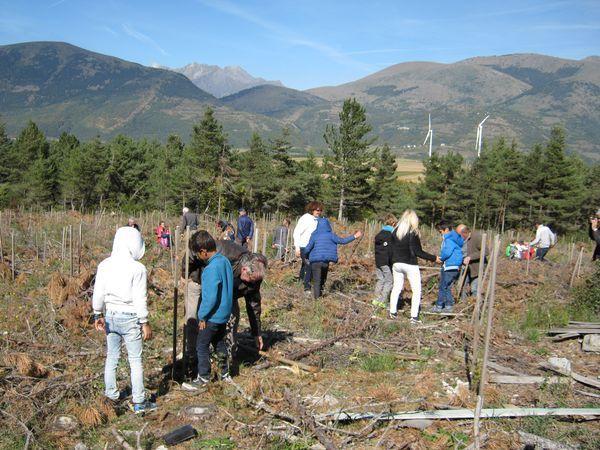 Plantation collective dans le Sud-Isère