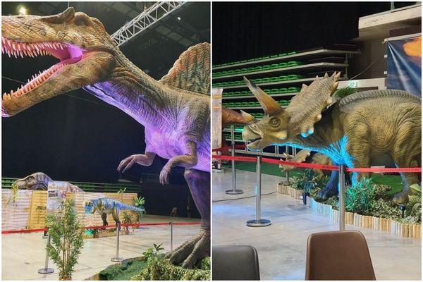 Les animatroniques de dinosaures à découvrir pendant deux jours au Capitole de Châlons-en-Champagne.
