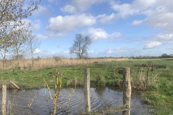Après la pluie, le ciel devrait retrouver un peu de couleurs, comme ici dans le marais poitevin, aux Magnils Reigners (Vendée)