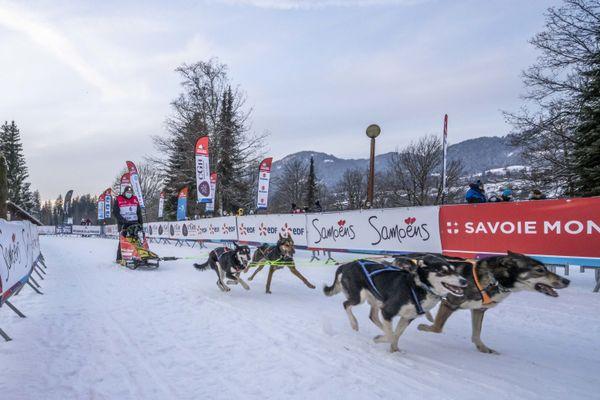 Un musher lors du prologue de la Grande Odyssée à Samoëns (Haute-Savoie) le 9 janvier 2021.