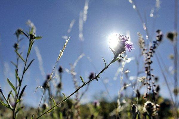 Le soleil brille aujourd'hui en Limousin