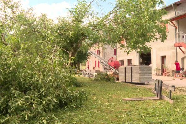 Plusieurs centaines d'arbres ont été cassés ou arrachés et des tuiles ont volé