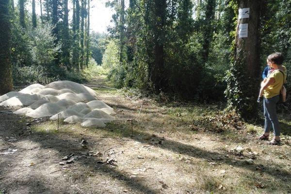 Des oeuvres au milieu des bois à Pleslin-Trigavou