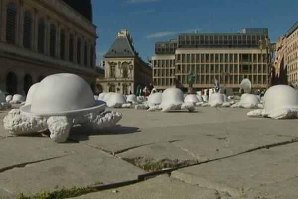 L'Armée des Tortues de la Paix a débarqué place Pradel, à Lyon