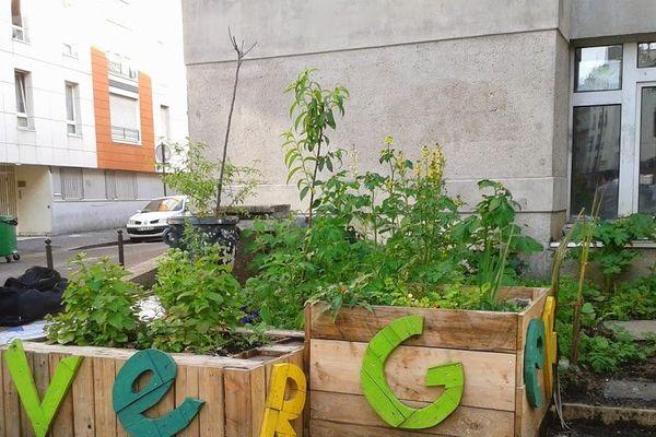 « Verger urbain » dans bacs hors sols en bois, rue Pajol Paris 18e