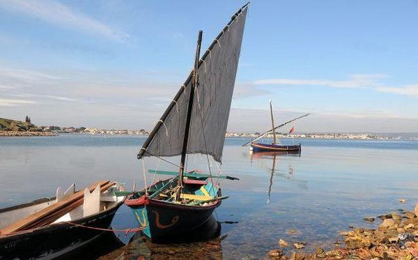 Une voile latine sur l'étang de Thau