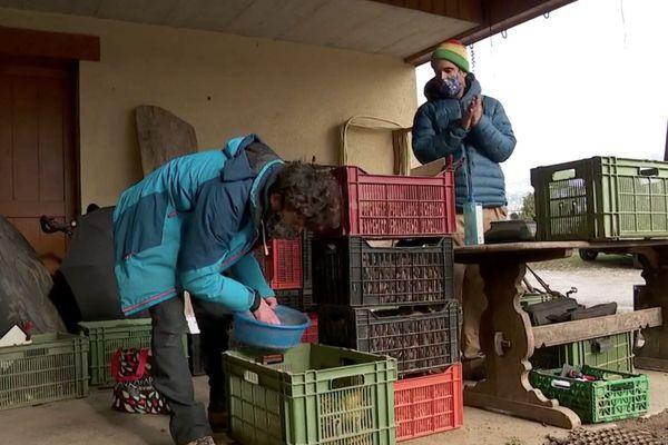 La distribution des paniers des AMAP remise en cause par le couvre-feu à 18h.