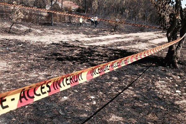 Saint-Bauzille-de-Montmel (Hérault) - les pompiers constatent et mesurent les dégâts après l'incendie - 9 août 2015.