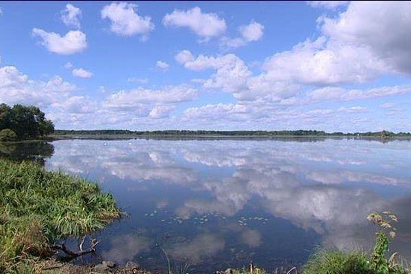 Les sondages auront lieu autour de l'étang des landes.
