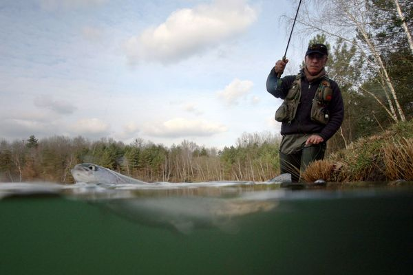 La pêche de loisir est à nouveau autorisée sur les lacs et plans d'eau du Puy-de-Dôme.