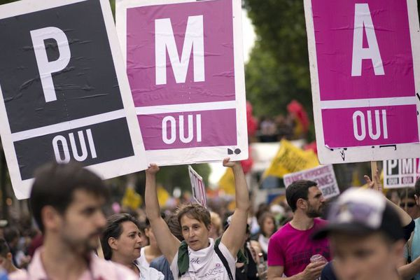 """Manifestation pour la """"PMA pour toutes"""" lors de la marche des fiertés de Paris en 2013"""