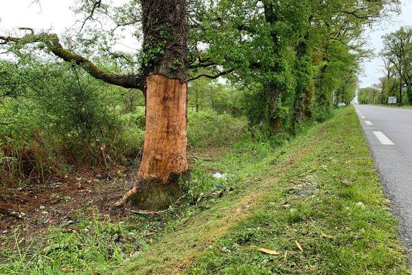 Une famille de 4 personnes décède dans un accident de la route à Bussière-Poitevine sur la RN 147
