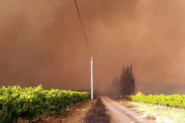 Générac (Gard) - l'incendie en approche sur les vignes - 31 juillet 2019.