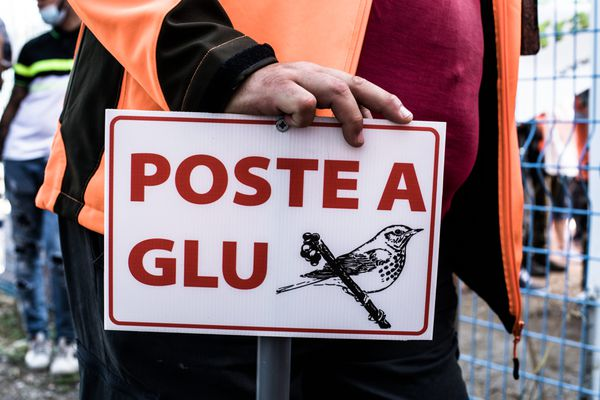 La chasse à la glu déclarée illégale par la justice ce 28 juin 2021.