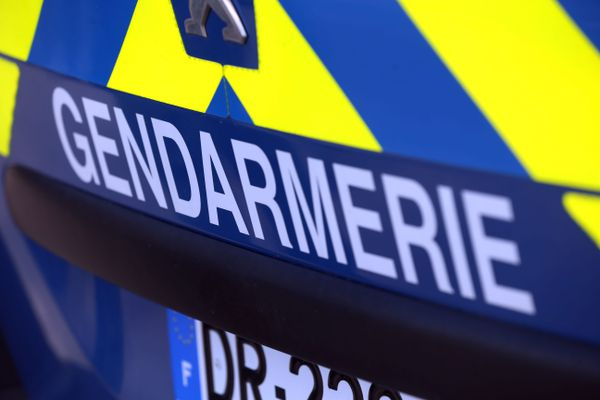 Les gendarmes mènent des recherches dans le secteur d'Ingrannes, en forêt d'Orléans. Photo d'illustration