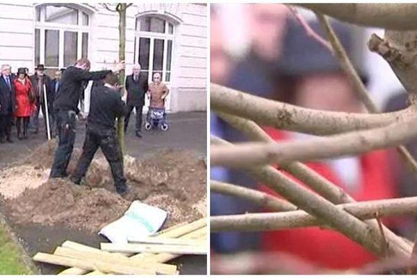30 mars 2016 : un arbre a été planté au Lycée Descartes en hommage à l'ancien maire de Tours Jean Germain. L'édile s'est suicidé le 7 avril 2015 à l'ouverture du procès des mariages chinois.