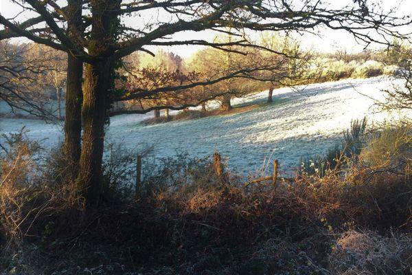 Un matin d'hiver sur la campagne monterfiloise