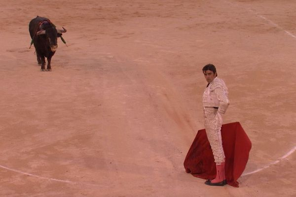 Nîmes, 14 septembre 2019. Perera raccompagne Cazadotes jusqu'au toril. Le toro de Garcigrande lui doit la vie…