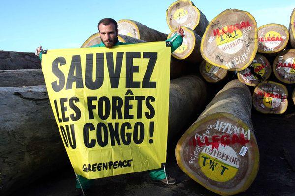 Greenpeace a symboliquement mis sous scellés du bois venu du Brésil et de République démocratique du Congo
