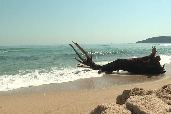 A quelques kilomètres du centre-ville, la plage de Pampelonne est vide.