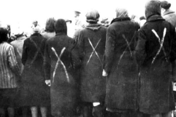 Près de 6 millions de Juifs ont été exterminés dans les camps de la mort.