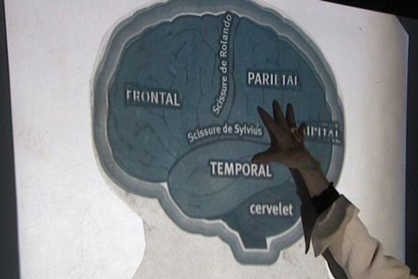 Une association plaide pour la construction d'un cérébroscope à Paris.