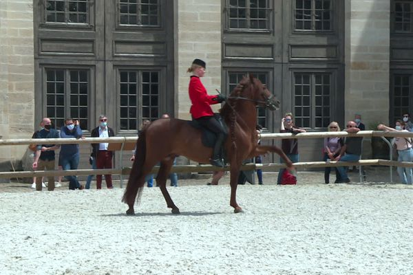 Trois semaines après le château, c'est au tour des Grandes écuries de Chantilly de rouvrir au public.