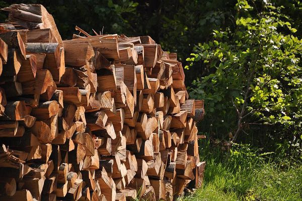 La vente des bois est une ressource importante pour le budget de certaines communes forestières.