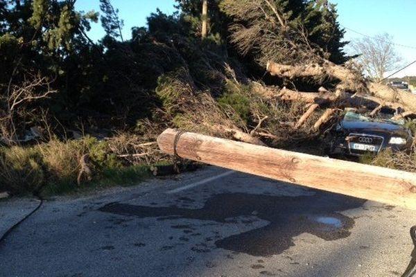 Un arbre est tombé sur la voiture d'un pompier à Saint-Hilaire-d'Ozilhan dans le Gard. Il souffre d'un traumatisme crânien - 9 février 2015