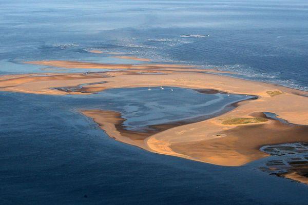 La conche du banc d'Arguin est un banc de sable mouvant.
