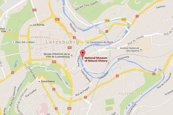 Pour trouver le Musée d'histoire naturelle à Luxembourg.